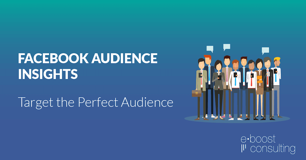 khai niem facebook audience insights